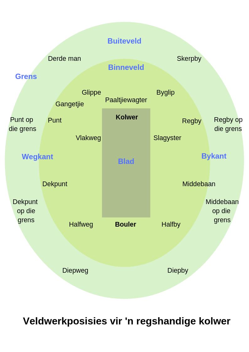 Wêreldbeker Krieket: Terminologie-gids en Uitsendings