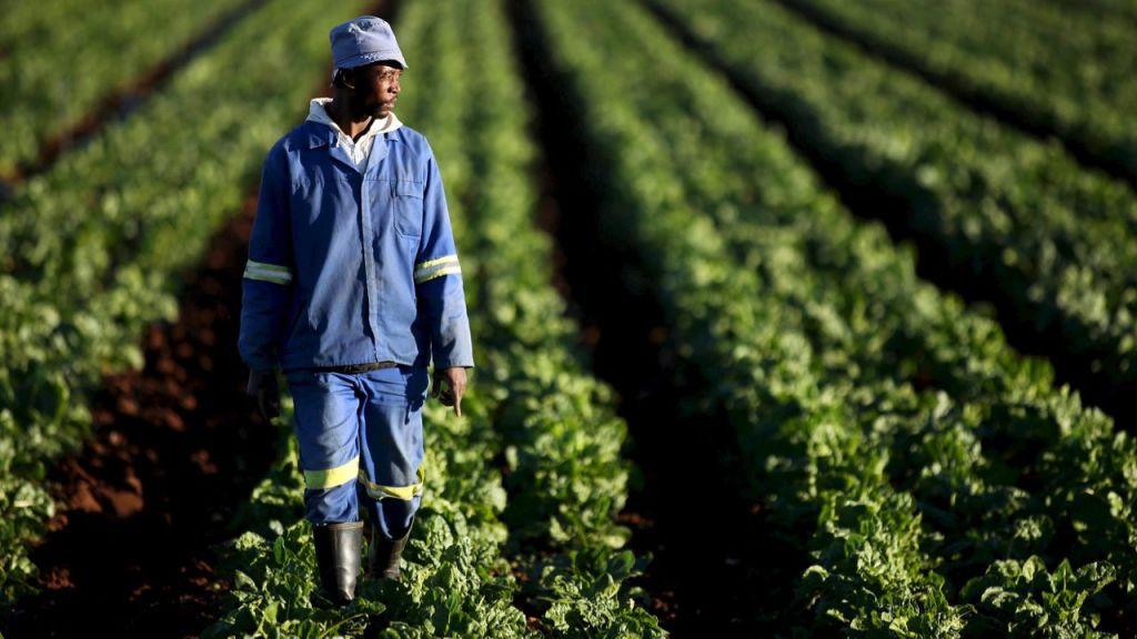 Die verhouding tussen plaaseienaar en -werker