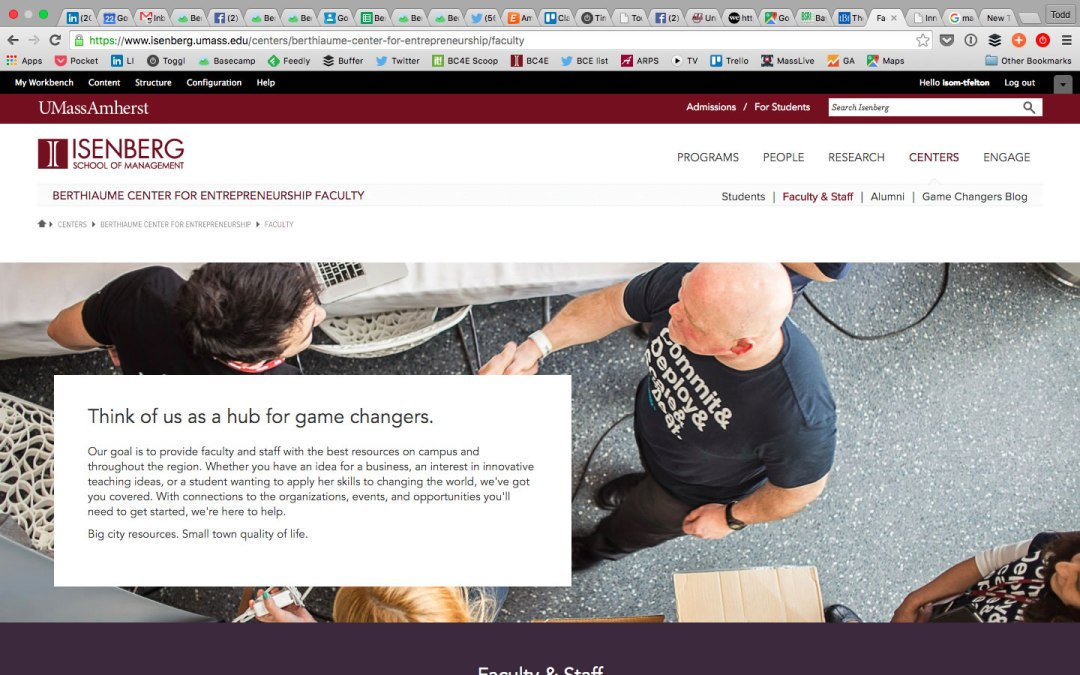 screenshot of image from Isenberg website