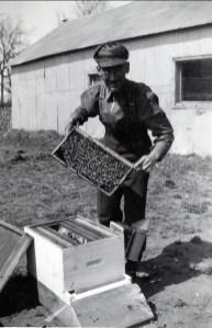 1942, St-André, Jean-Paul Naubert et les abeilles