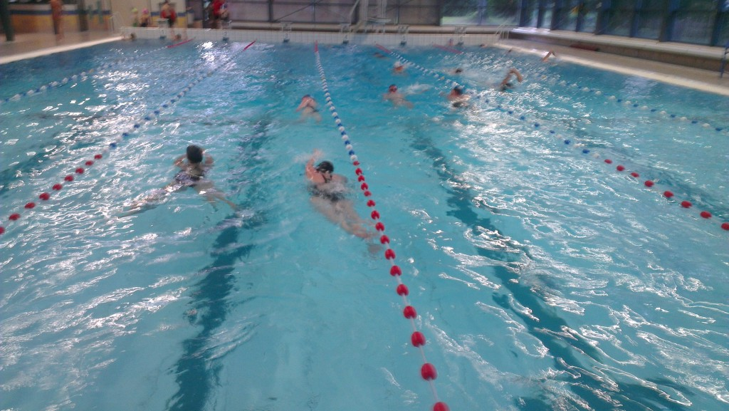 Zwem4daagse in de Heerenduinen