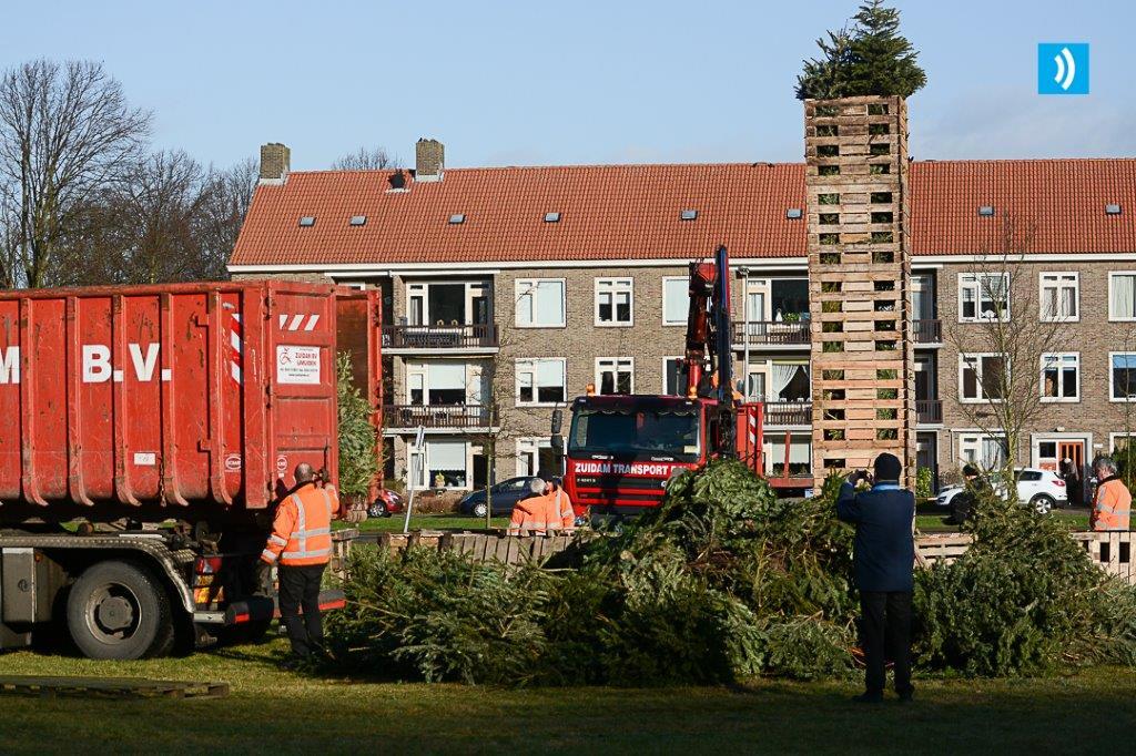 kerstbomen-ton-1