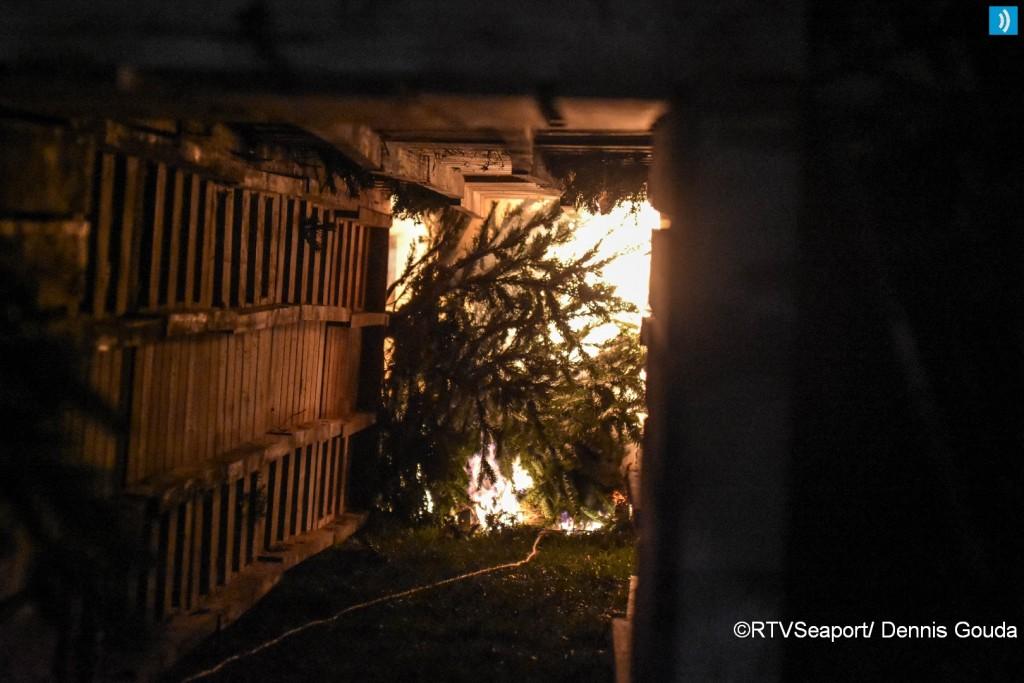 kerstbomen-verbranding-ijmuiden-3