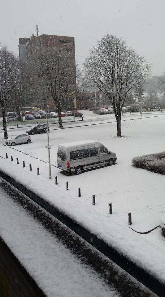 Sneeuw Carla Snijder