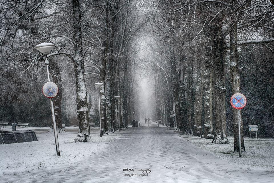 Sneeuw Jaap Bakker01