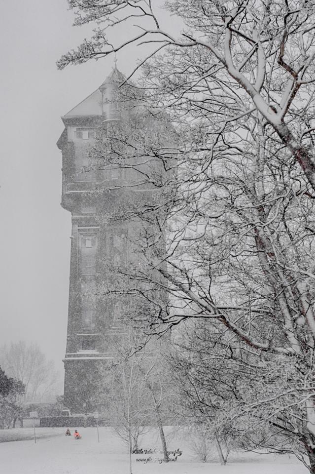 Sneeuw Jaap Bakker04