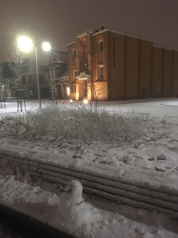 Sneeuw Nel ten Dolle - de Graaf