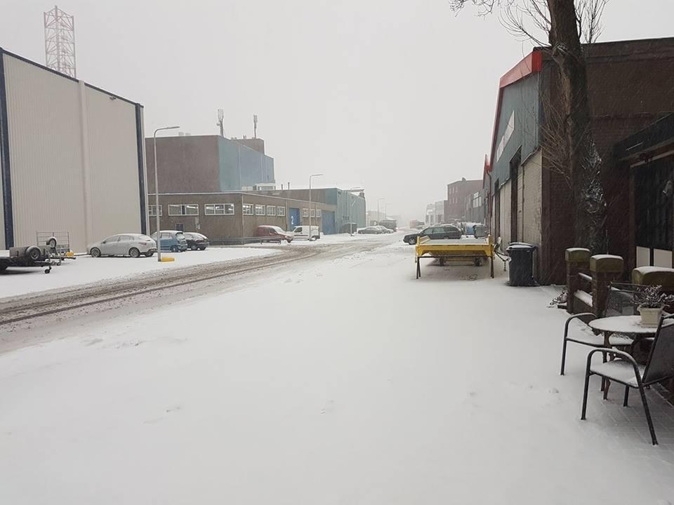 Sneeuw Reinder01