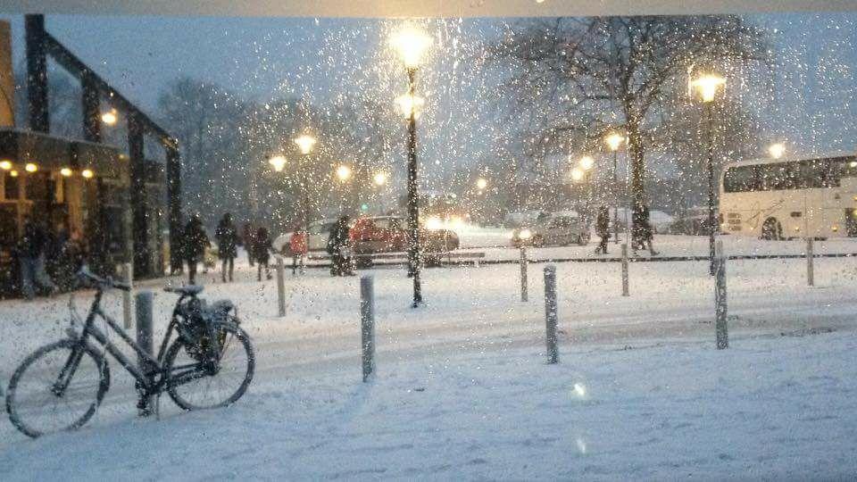 Sneeuw jeroen verwoort theo