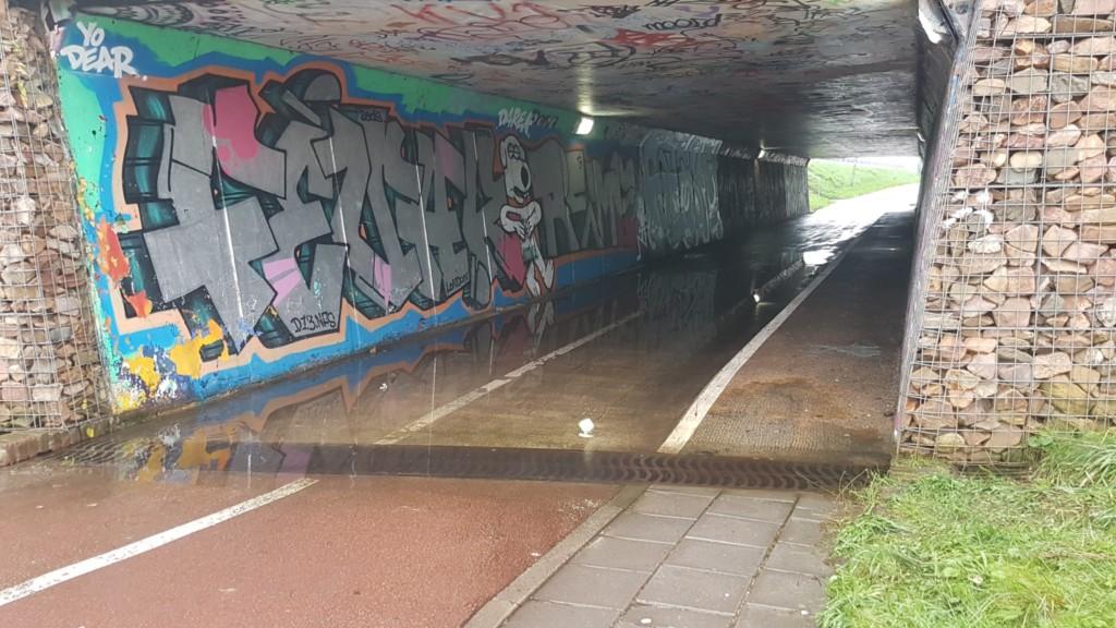 Waterballet in fietstunnel aangepakt
