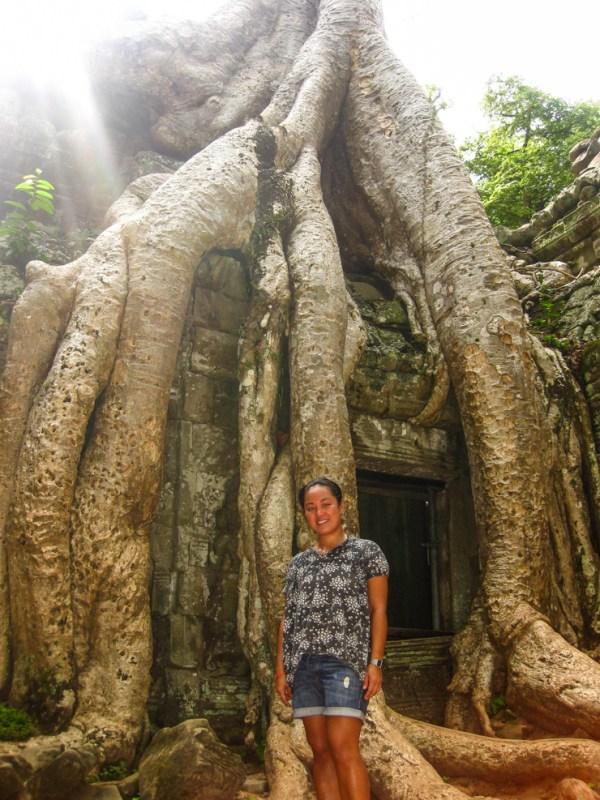 Overgrown tree at Angkor Wat