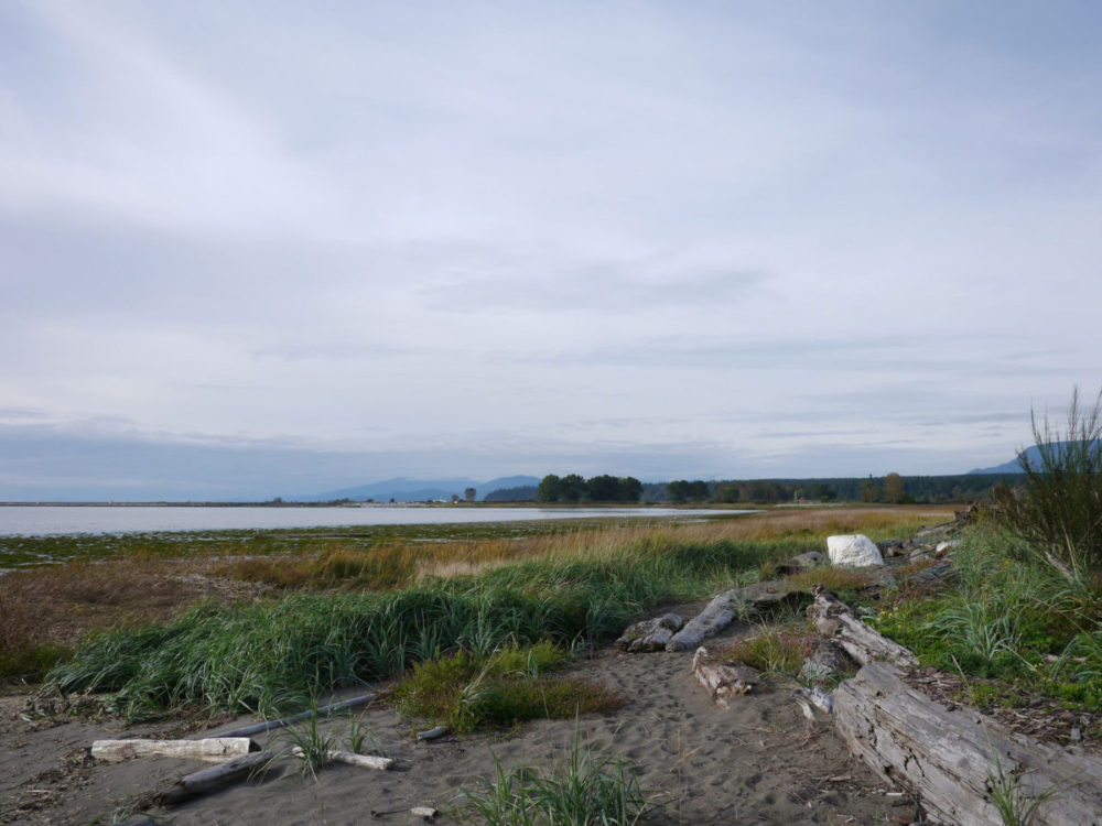 Iona Beach in Richmond BC