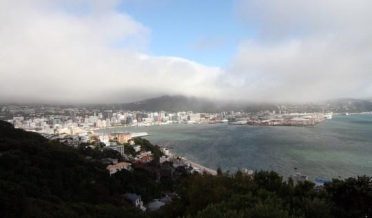 Mount Victoria Wellington