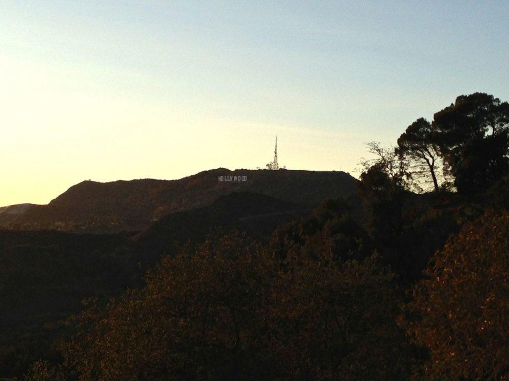 Griffith Park View
