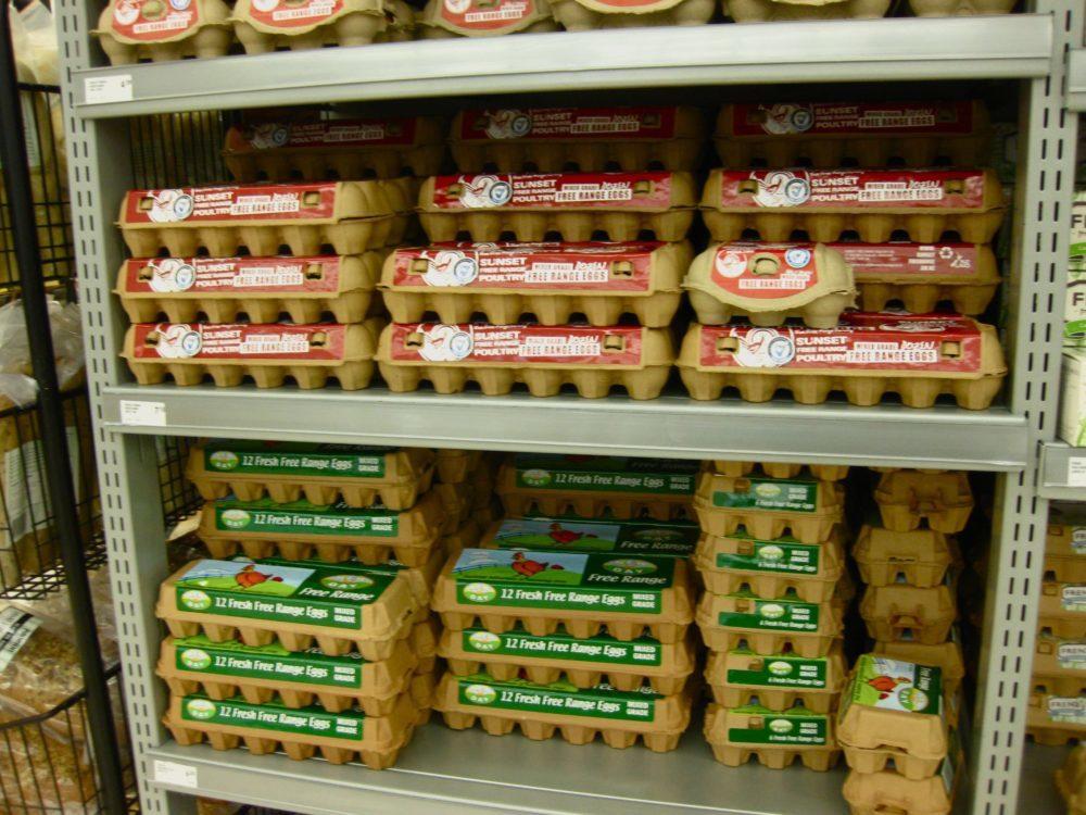 New Zealand eggs | www.rtwgirl.com