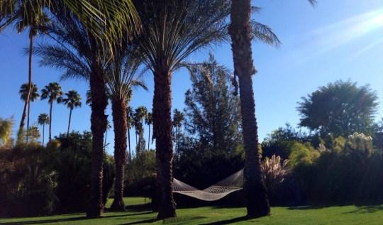 Parker Palm Springs | www.rtwgirl.com