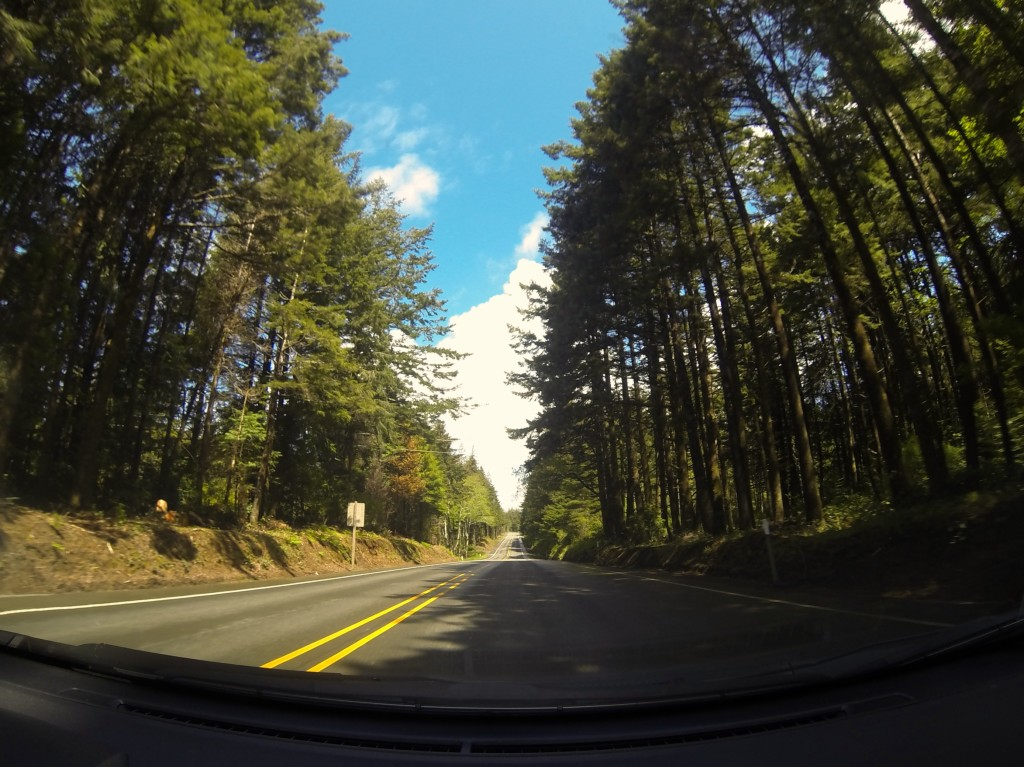 GoPro Dash Cam Oregon