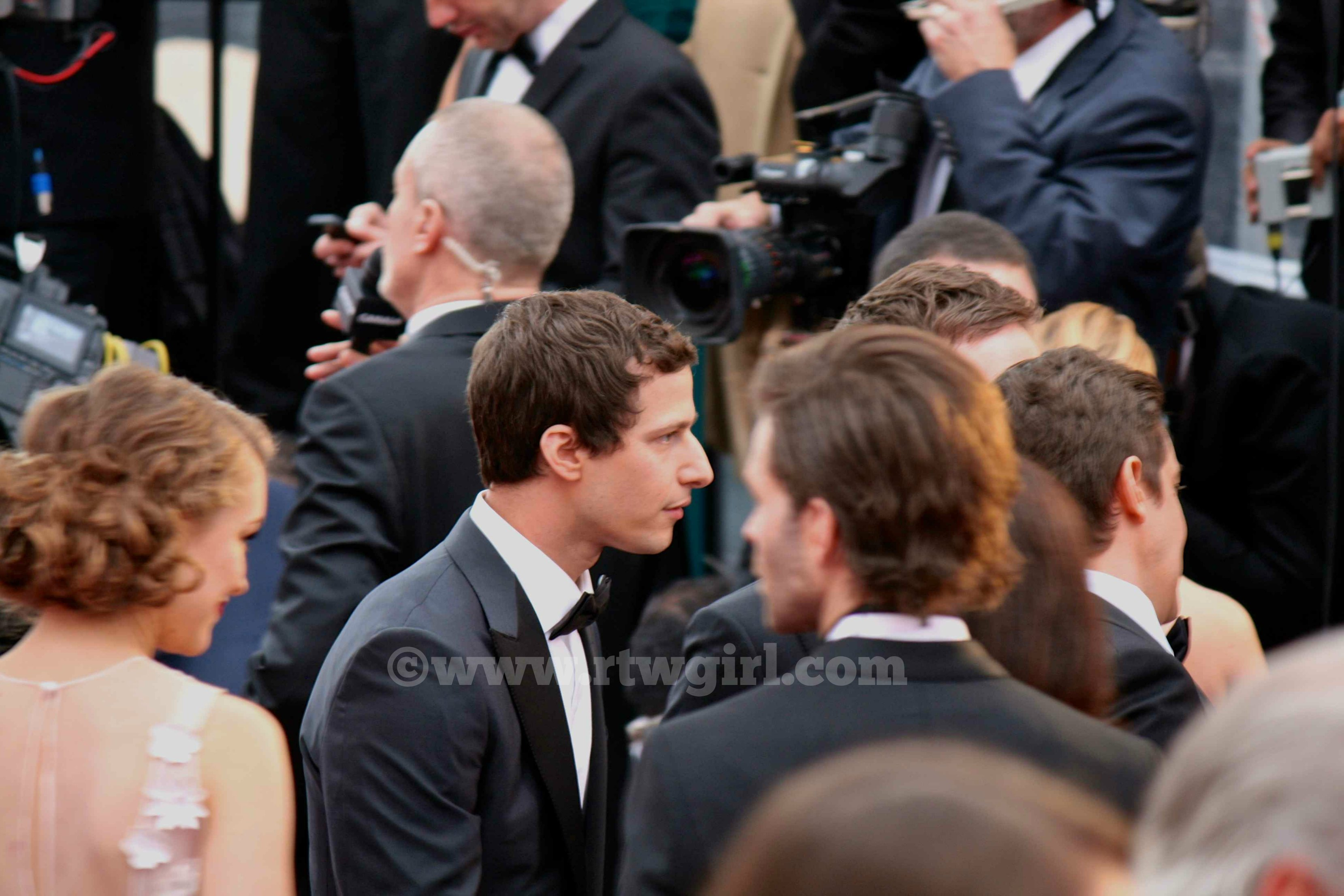 Andy Samberg Red Carpet 2015