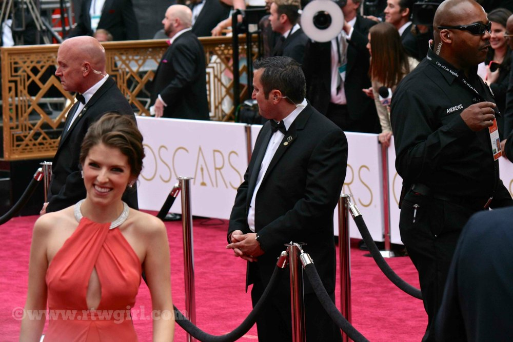 Anna Kendrick Red Carpet 2015
