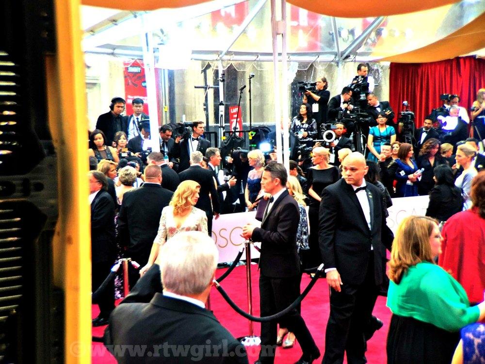 Ethan Hawke Red Carpet 2015