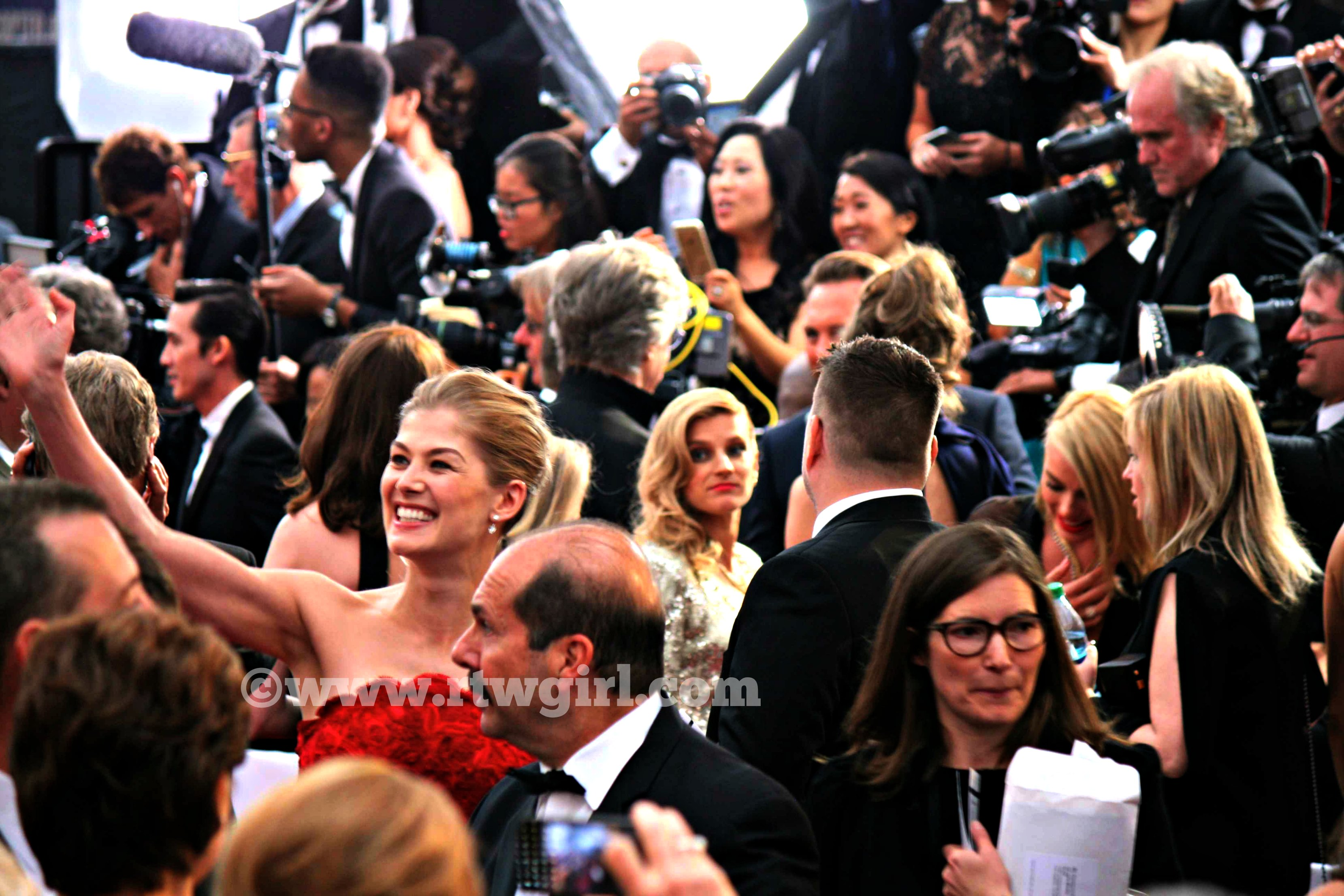 Rosamund Pike Red Carpet 2015
