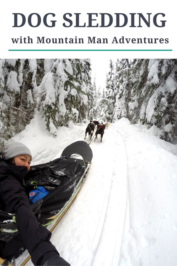 Dog Sledding With Mountain Man Adventures