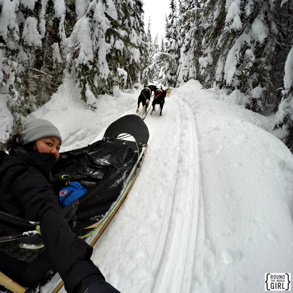 Dog Sledding at Sunpeaks | www.rtwgirl.com