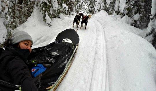 Dog Sledding at Sunpeaks | www.rtwgirl.com