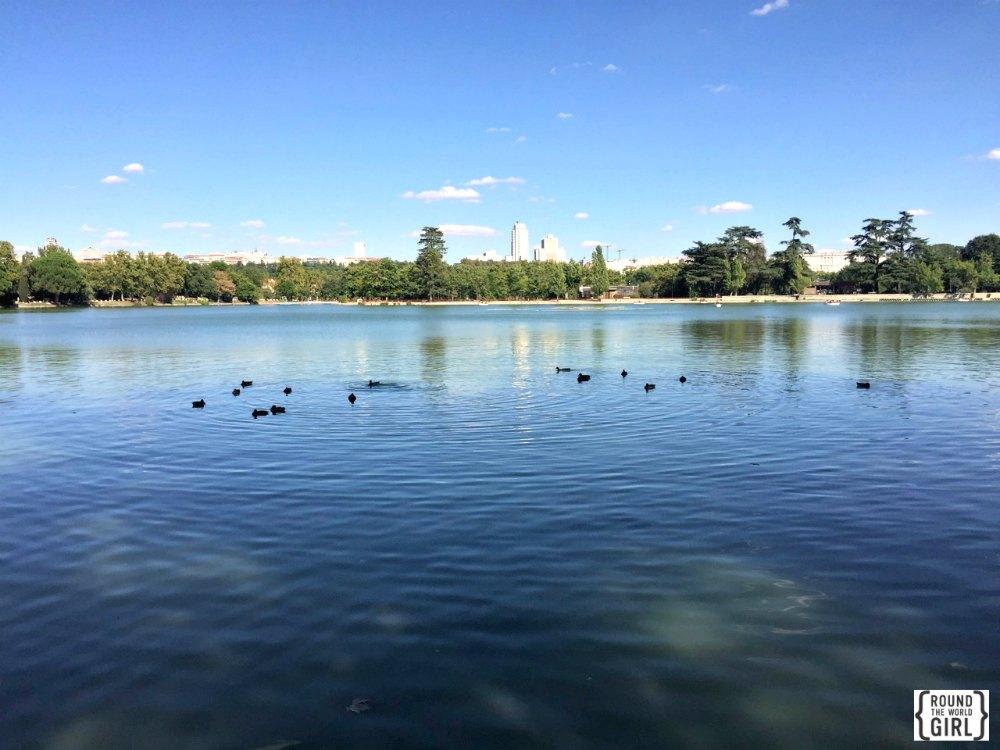 Lago de Casa de Campo - Free Madrid