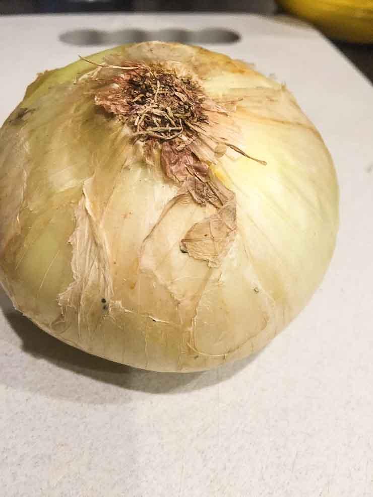 Onion | www.rtwgirl.com