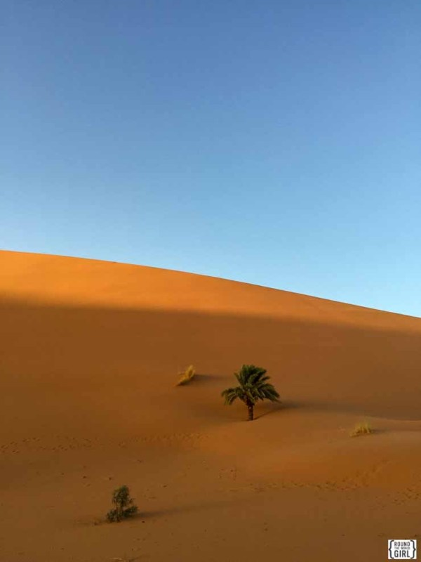 Sahara Desert Photos