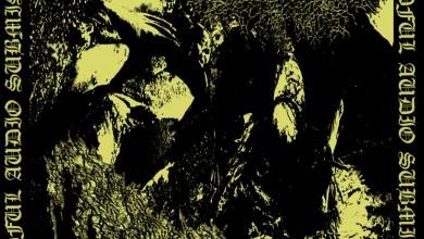Massive Gore Bulge / Cop stench split cover