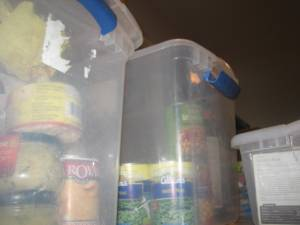 This is my pantry, the plastic tubs that hold my food