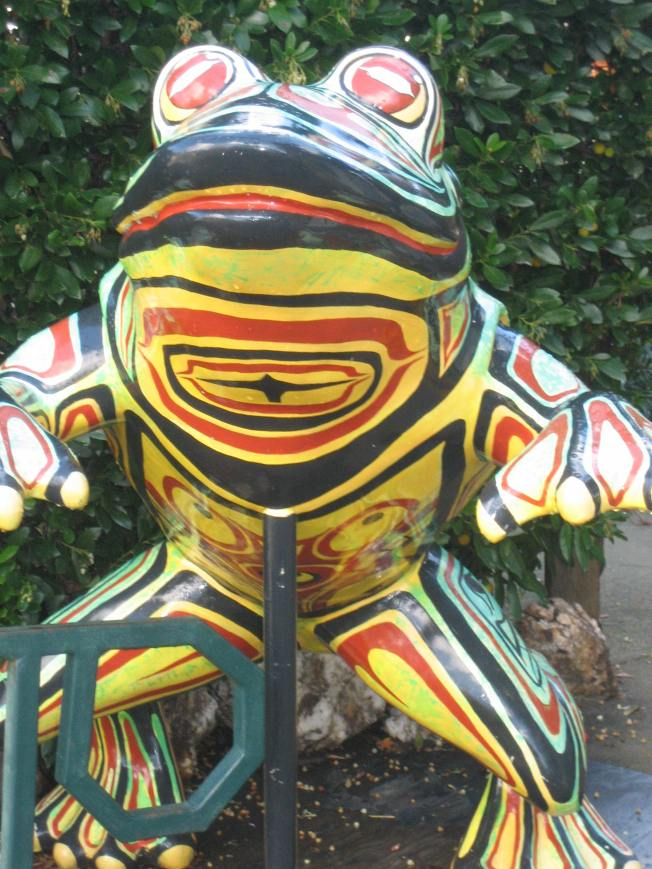Frog in front of the library