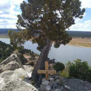 A tree stands above a body of water. In front of the tree is a wooden cross surrounded by stones.