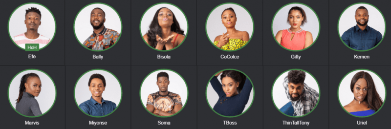 Big Brother Nigeria 2017 housemates 2017