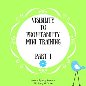 visibility-to-profitability-mini-training-part-1