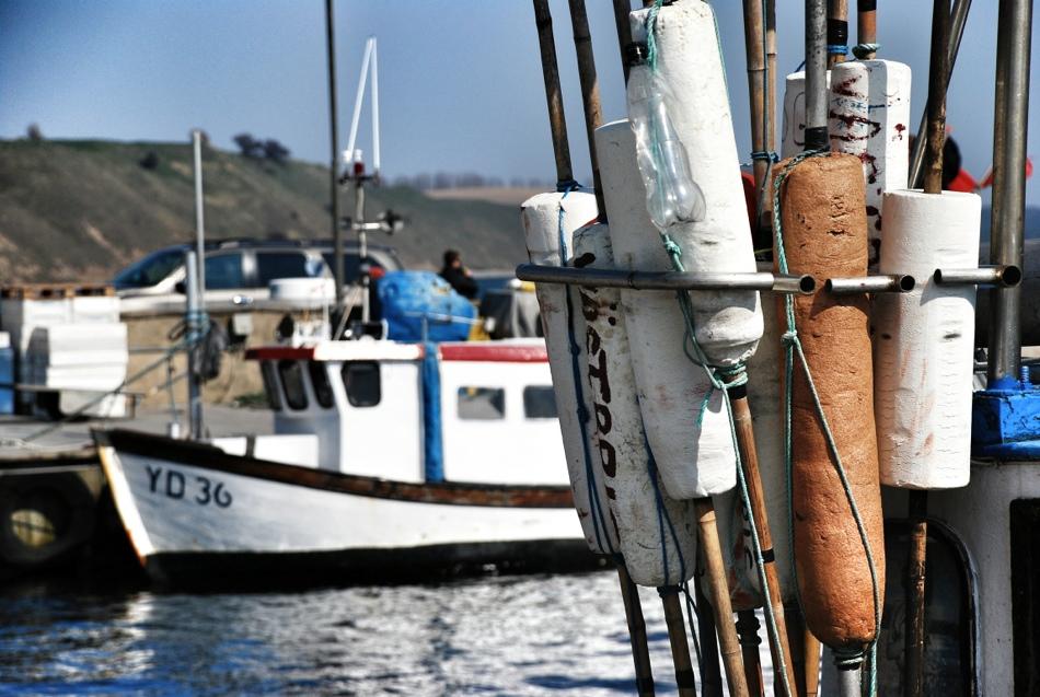 Fiske, Skåne, Sverige