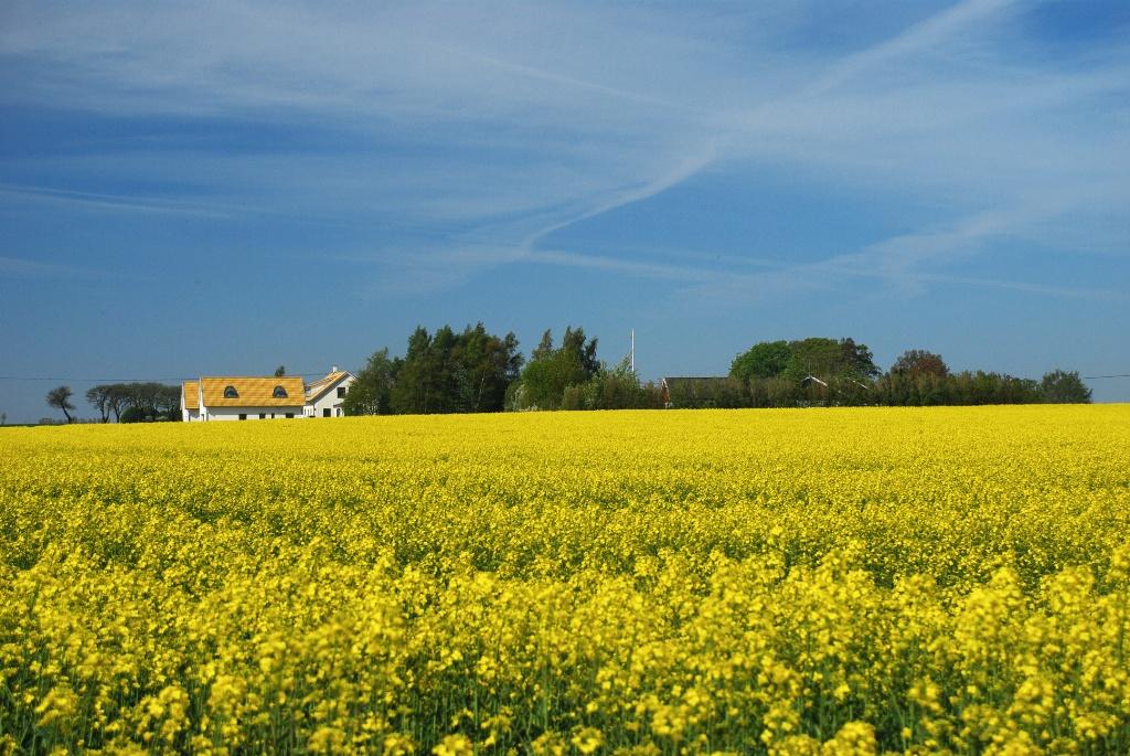 Biltur till Falsterbo-Skåne-Sverige
