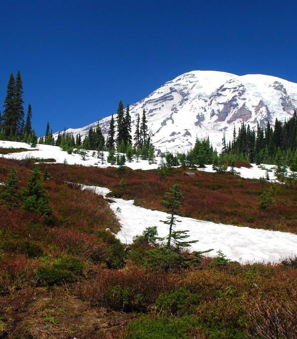 Mount Rainier NP, Washington, USA