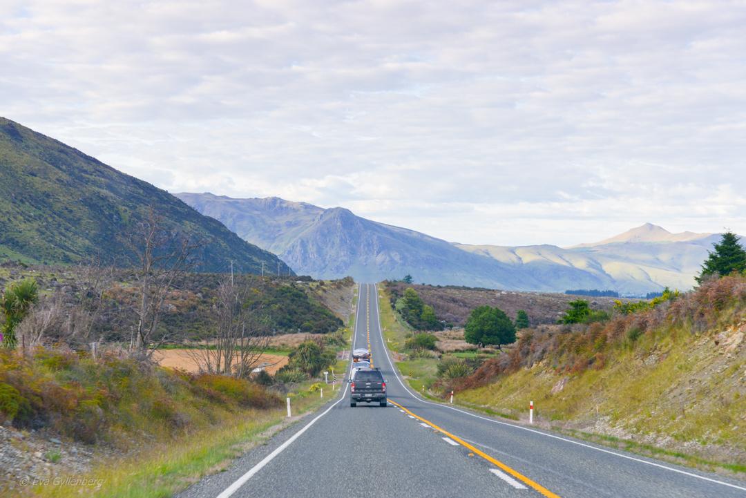 On the road till Te Anau
