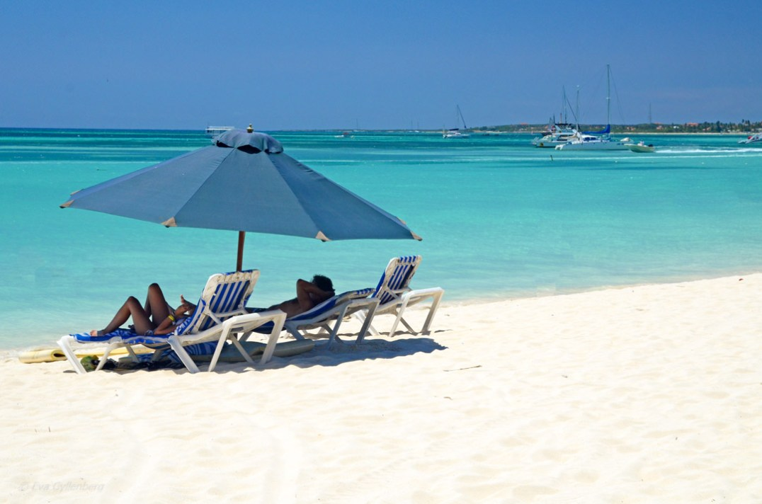 Arubas vita stränder vid Palm Beach