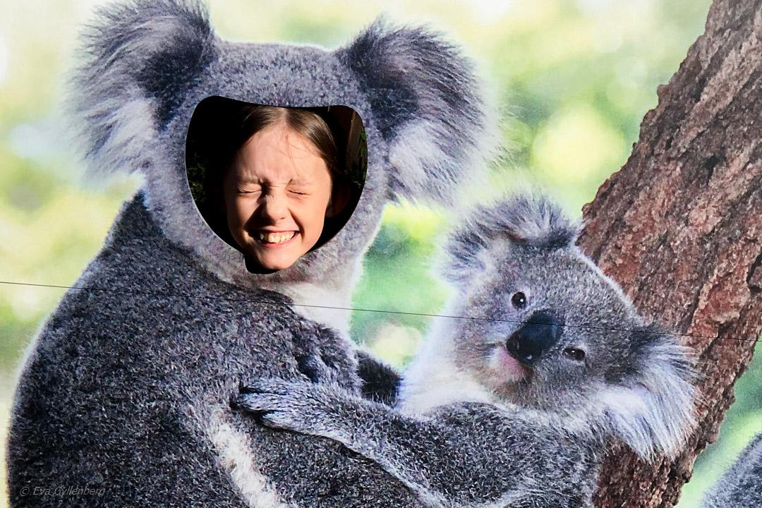 Resa till Australien med barn