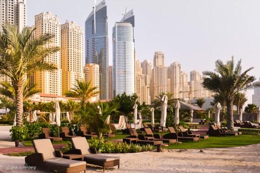 Stranden vid JBR - Dubai - UAE