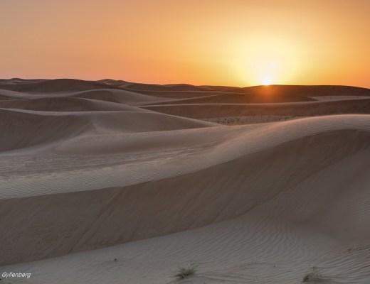 Öknen - Dubai - UAE