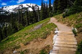 Vandring i Mount Rainier- Washington