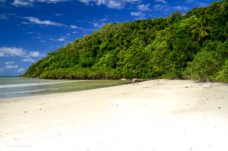 Cape Tribulation - Daintree - Queensland - Australien