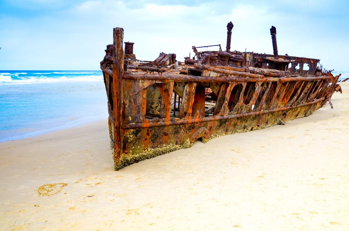 Fraser Island - Dingos och skeppsvrak på världens största sandö