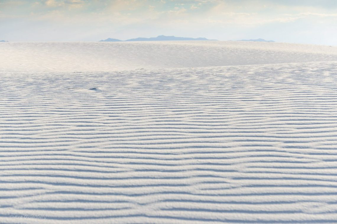 White Sands National Monument - New Mexico (19)