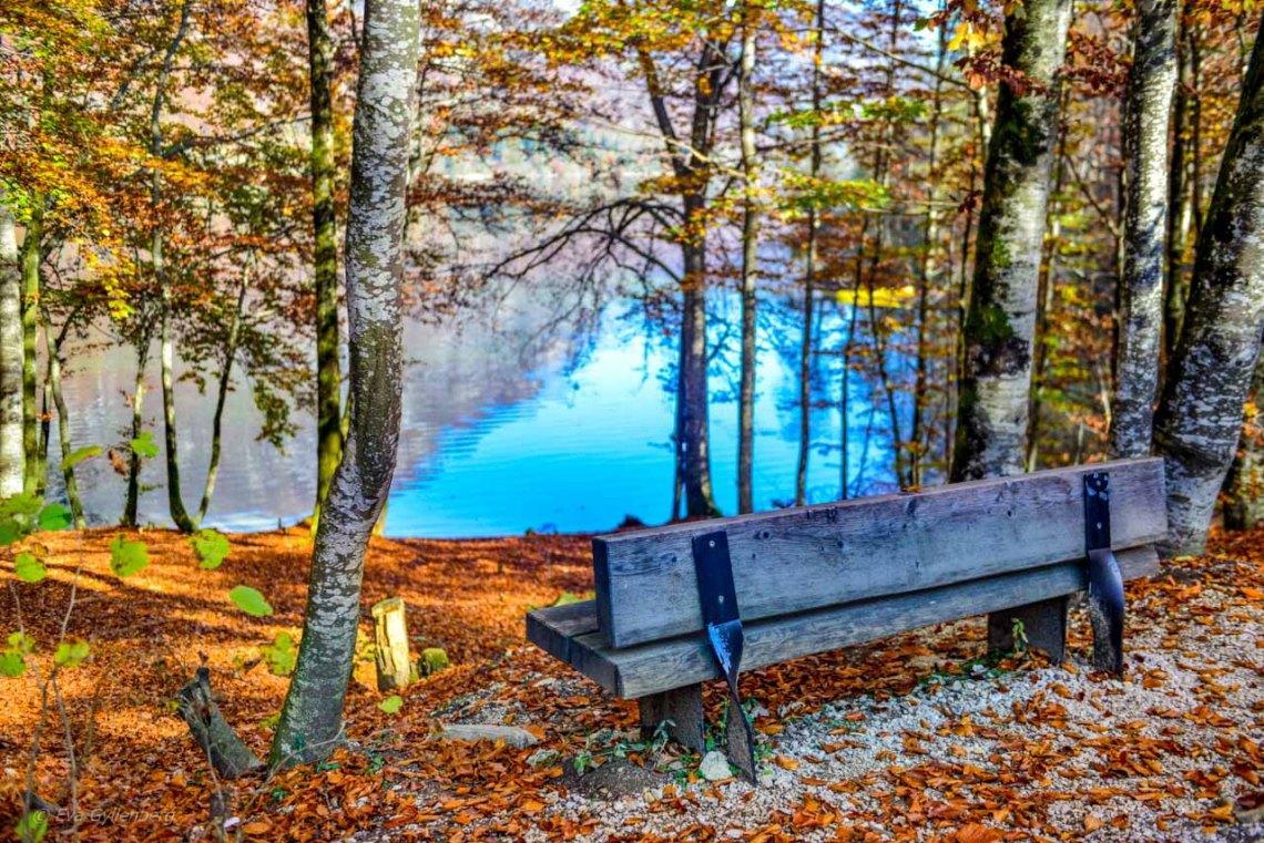 Bänk vid Lake Bohinj - Slovenien